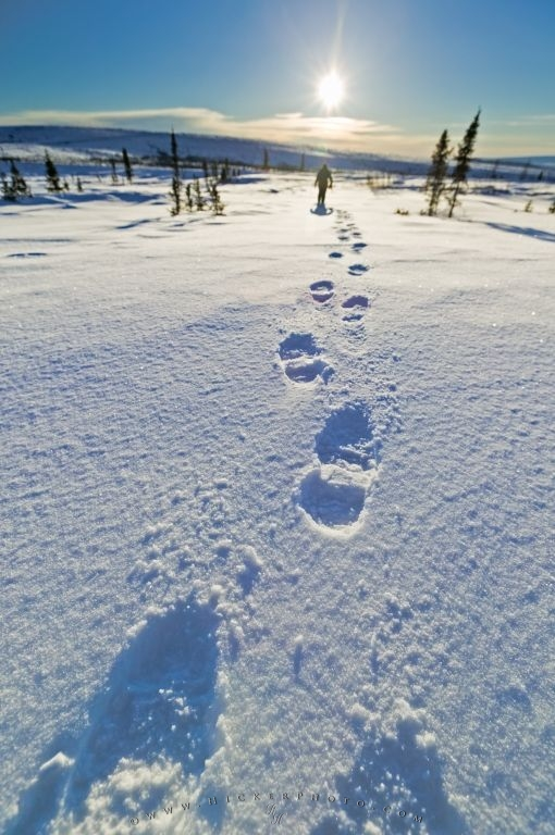 High Resolution Fall Wallpaper Footprints In The Snow Photo Information