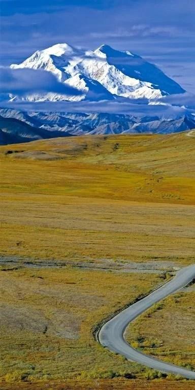 Www Hd Animal Wallpaper Com Alaska Denali Panorama Photo Photo Information
