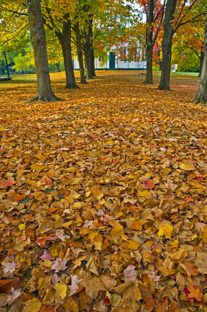 Autumn Leaves Falling Hd Wallpaper Path Covered Fall Leaves Sharon Temple Ontario Photo