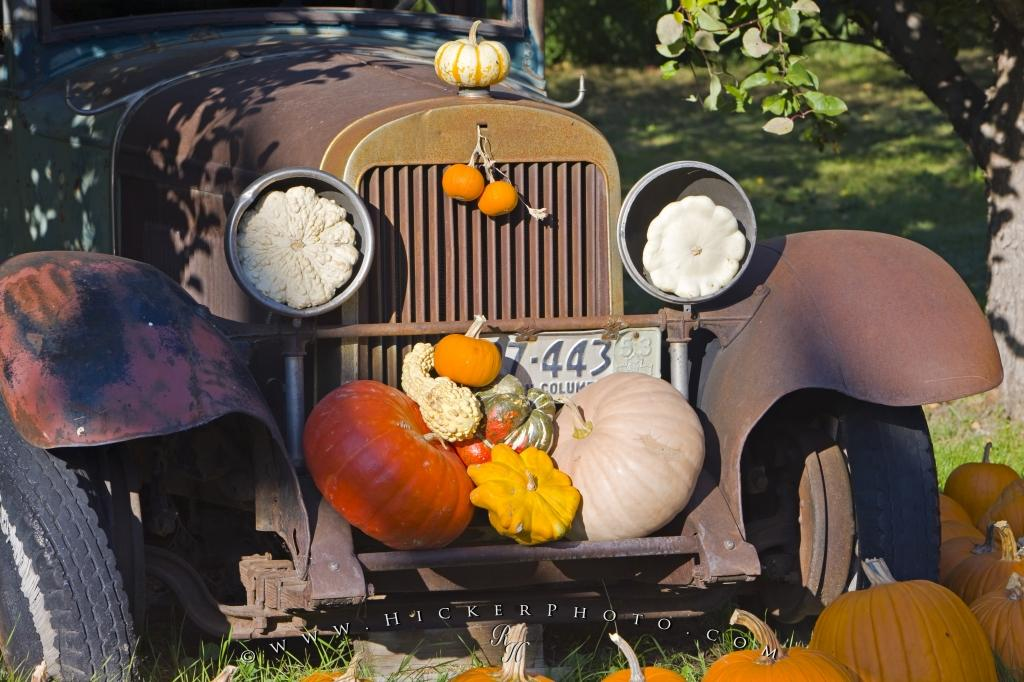 Fall Pumpkin Computer Wallpaper Free Wallpaper Background Vintage Car Pumpkins Squash