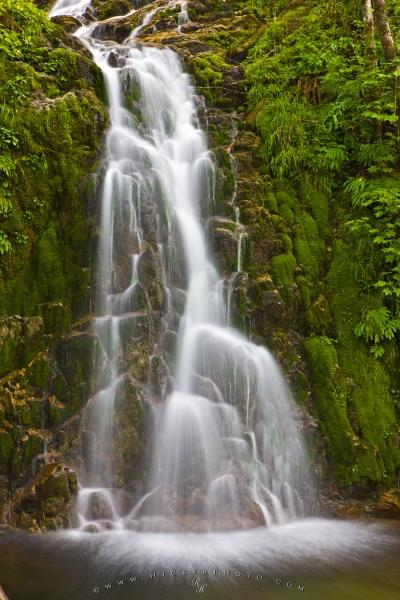 Victoria Falls Hd Wallpaper Rainforest Waterfall Picture Northern Vancouver Island