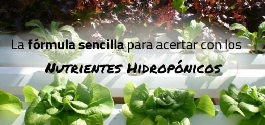 formula nutrientes hidroponicos