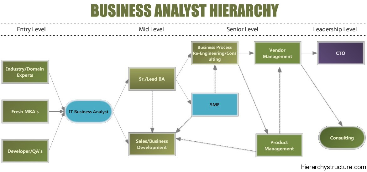 Business Analyst Hierarchy Designation Hierarchy - business analysis