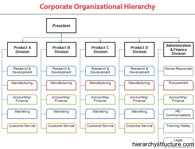 Corporate Organizational Hierarchy structure Hierarchy structure