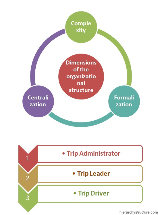 Sports Organization Hierarchy Chart Organization Structure