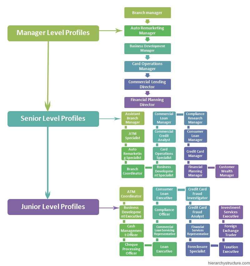 Bank Employee Hierarchy Chart Bank Career Hierarchy structure