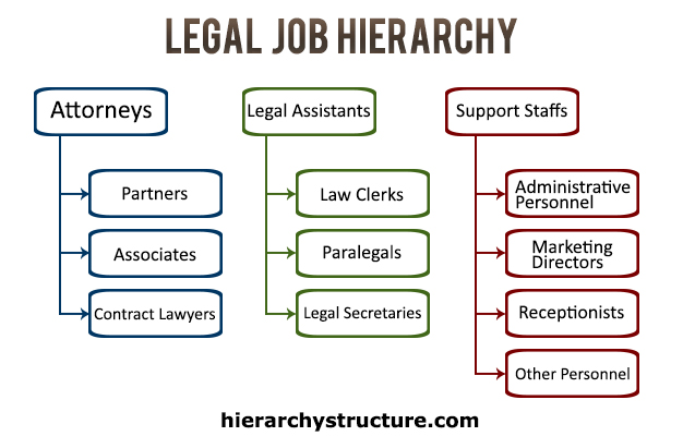 Legal Job Hierarchy Chart Hierarchystructure