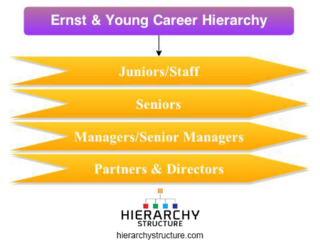 Ernst Young Career Hierarchy Chart Hierarchystructure