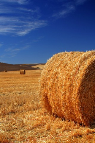 Us Flag Iphone Wallpaper Hay Bale High Resolution Wallpaper Hd Wallpapers