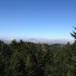 Fog hovers over the ocean in the distance in this view from Sky Trail