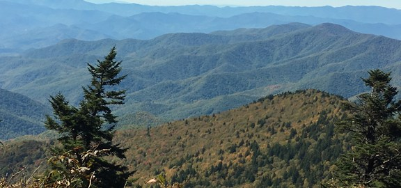 View from the A.T. in the Smokies