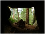 Boulders And Forest