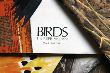 title detail from a vintage 1970s RSPB magazine