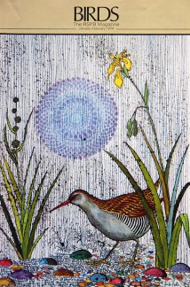 illustration of a water rail from a vintage 1970s RSPB magazine