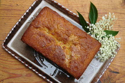 Elderflower almond cake with sprig of elderflowers
