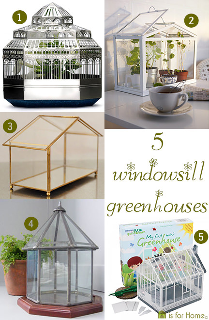 selection of 5 windowsill greenhouses