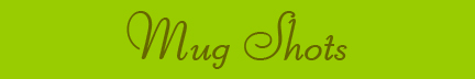&quot;Mug Shots&quot; blog post banner