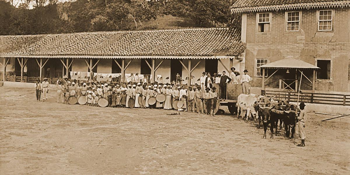 Partida para colheita de café no Vale do Paraiba em 1885, foto de Marc Ferrez