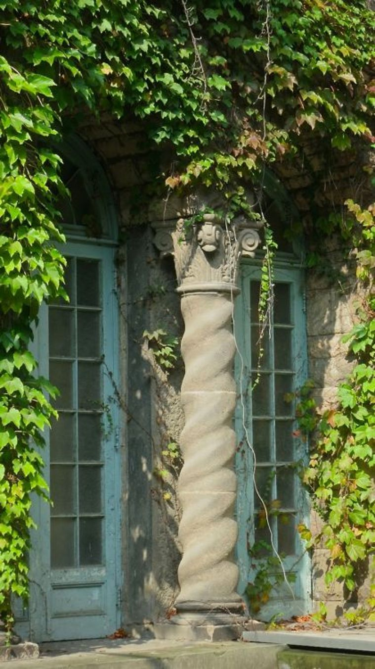Column, vines