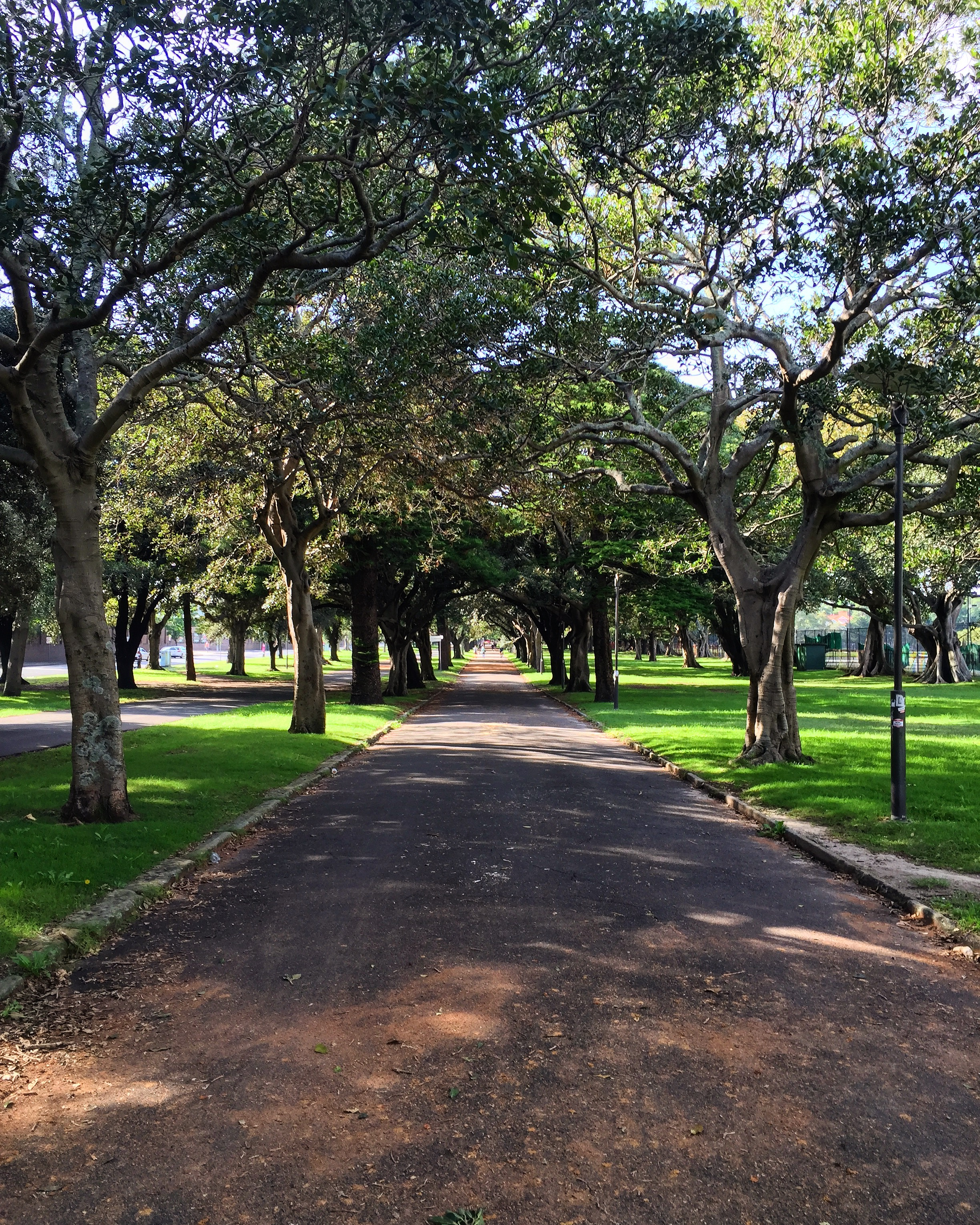 Federation Way, Centennial Park
