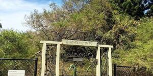 Brolga Gate, Centennial Park