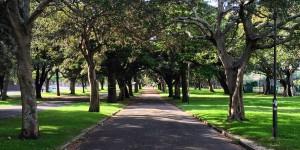 Federation Way, Centennial Park