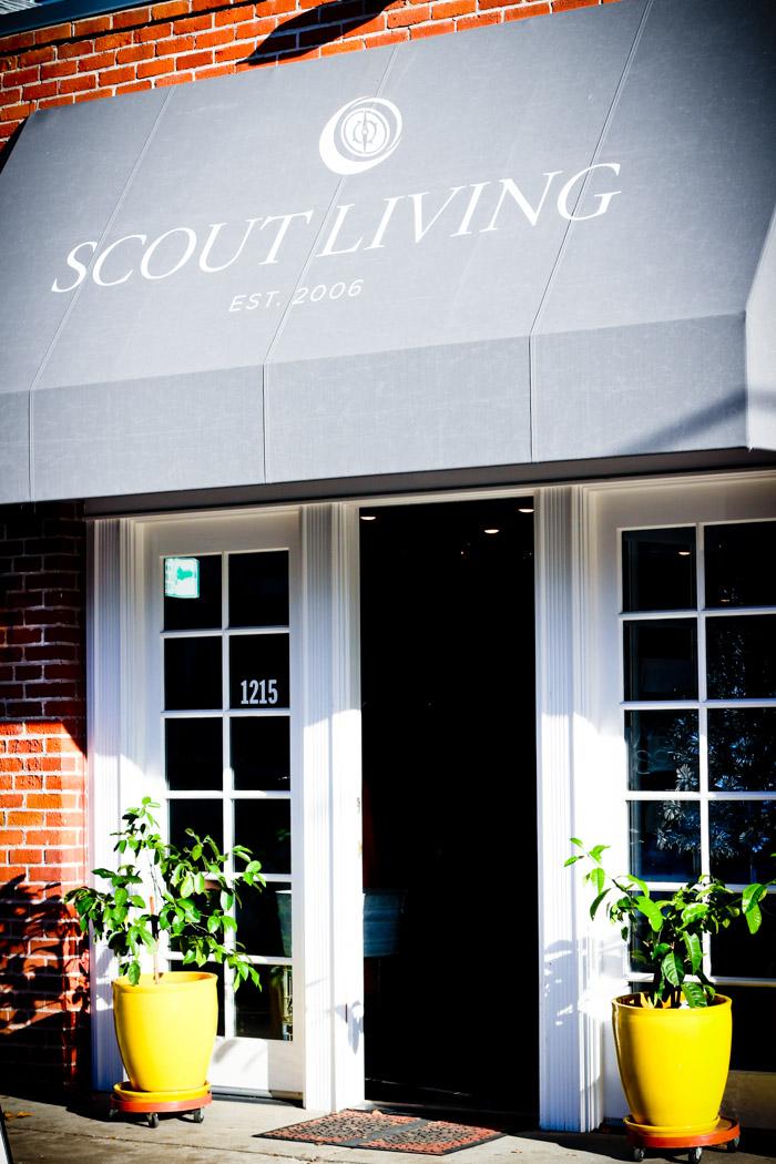 home  Shopping Sacramento: Scout Living