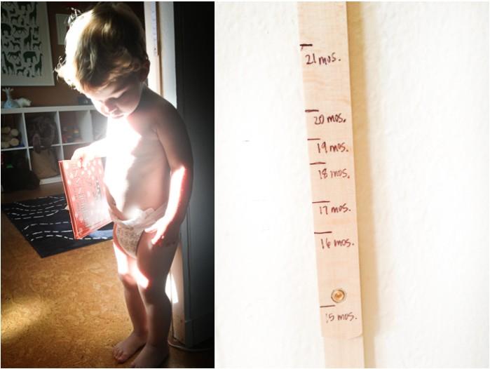 family design  Lifes Measuring Stick