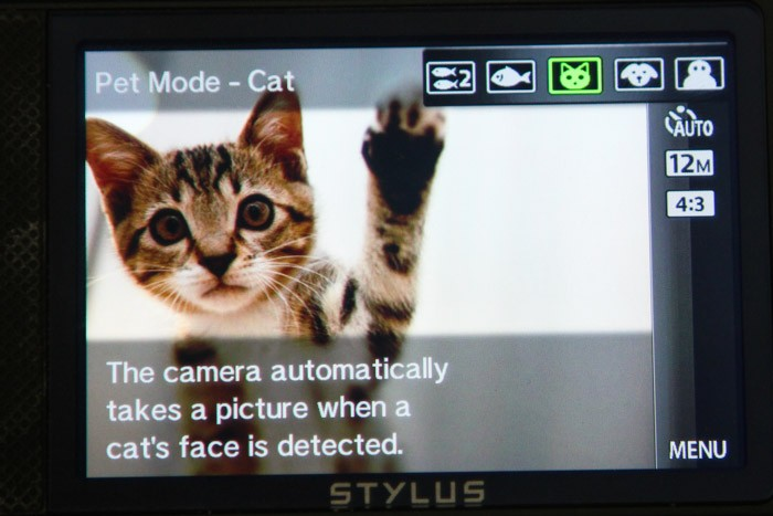 uncategorized  Pet Mode (and some Friday links)