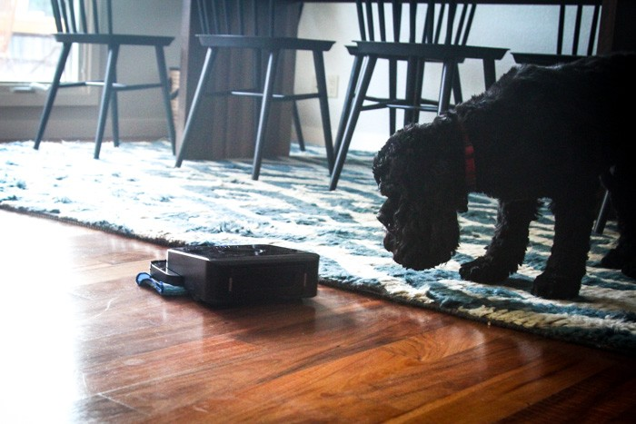 home  Cleaning up with iRobot