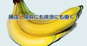 013 tyounohataraki01
