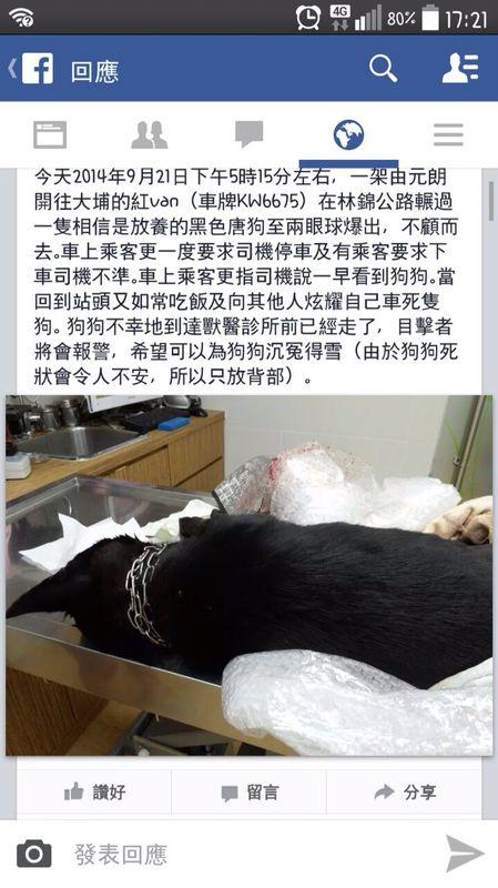 有車上乘客將小狗救到獸醫診所急救,唯小狗已返魂乏術。