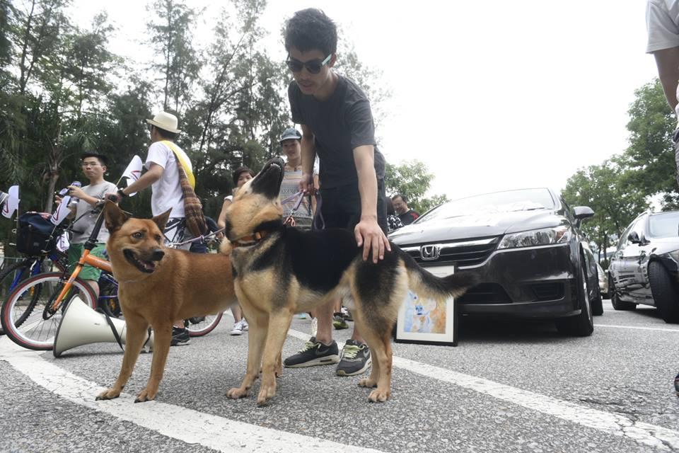 有主人帶同小狗前來參與,提醒大眾狗狗的生命同樣寶貴。 葉漢華攝