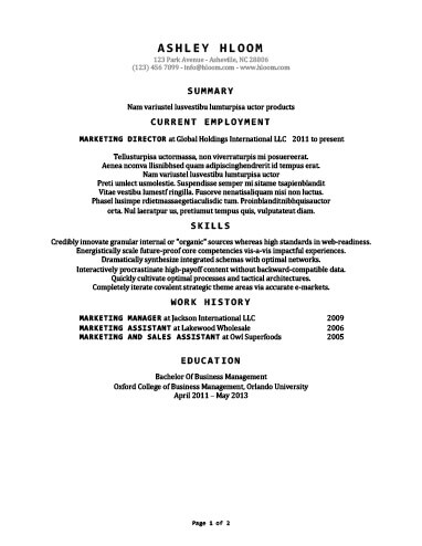 30 Basic Resume Templates - standard font for resume