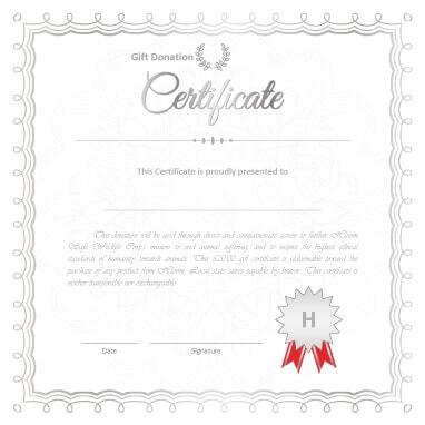 13 Free Printable Gift Certificate Templates Birthday, Christmas