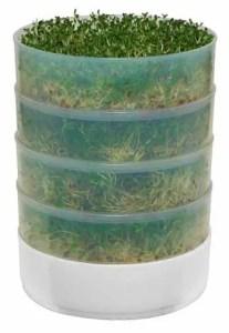 stacked  microgreens grow box