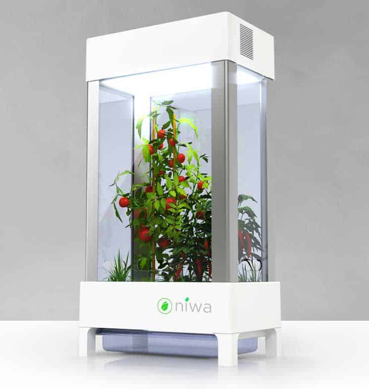 niwa-smartphone-connected-home-hydroponics-system