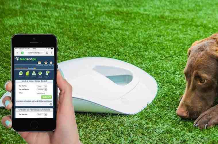 Feed and Go automated pet feeder