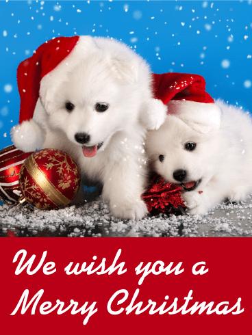 Falling Anow Wallpaper Santa Puppies Christmas Card Birthday Amp Greeting Cards