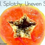 Are Papaya Enzymes the Answer to Banishing Red, Splotchy, Uneven Skin Tone?