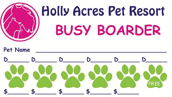 Dog Boarding, Daycare Fort Lauderdale FL Holly Acres Pet Resort