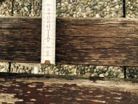 Holz im Auenbereich: Guter Schutz fngt bei der Holzart ...