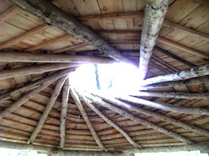 Example of a Reciprocal Roof