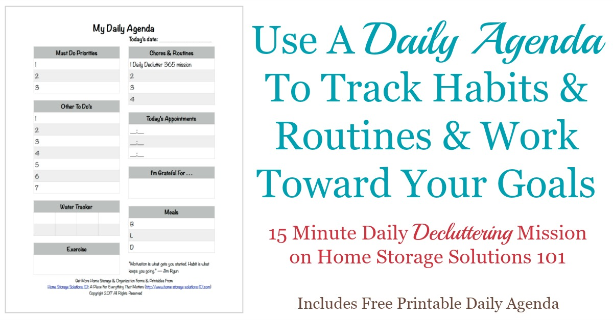Printable Daily Agenda Way To Track Your Habits  Routines - Agenda Forms