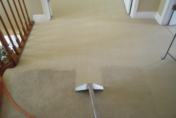 Common Carpet Cleaning  Shampooing Mistakes HomeAdvisor - pictures cleaning