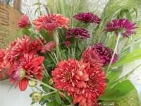 Autumn Flowers - Home Flower Garden