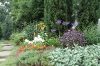 Front Yard Edible Garden Ideas Photograph | Front Yard Edibl