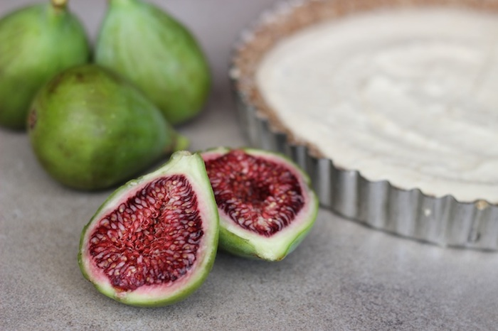 fig_honey_tart_case