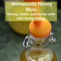 fermenting-honey-wine-1