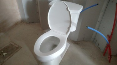 Brand new toilet... Oh the horrors it will see.